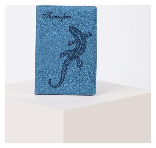 Обложка для паспорта, цвет голубой  NNB