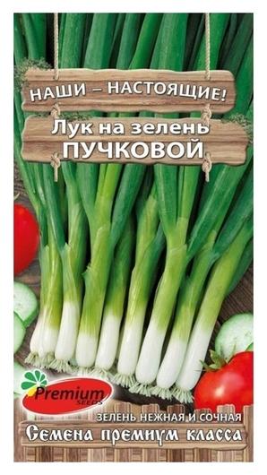 Семена Лук на зелень пучковый, 1гр  Premium Seeds