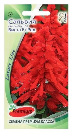 """Семена цветов сальвия сверкающая """"Виста ред"""", F1, 10 шт  Premium Seeds"""