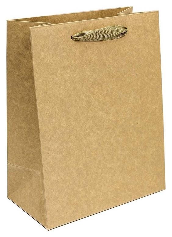 Пакет подарочный крафт бурый 18х23х10см 210г арт.000221e  Omg-gift