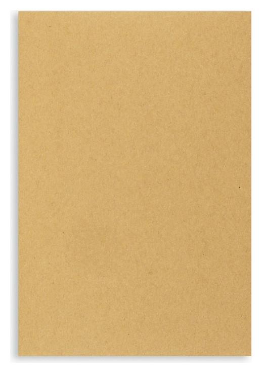 Пакет крафт C5 стрипmultipack 160х230 80г 500шт/уп/5611 Packpost