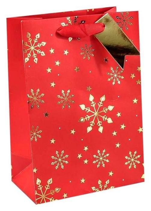 Пакет подарочный снежинки на красном фоне 14х20х8см арт:300354g  Omg-gift