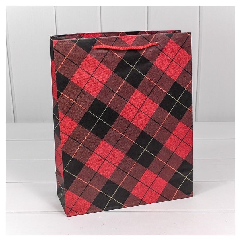 Пакет подарочный клетки и полоски 26х32х10см арт.00038c Omg-gift