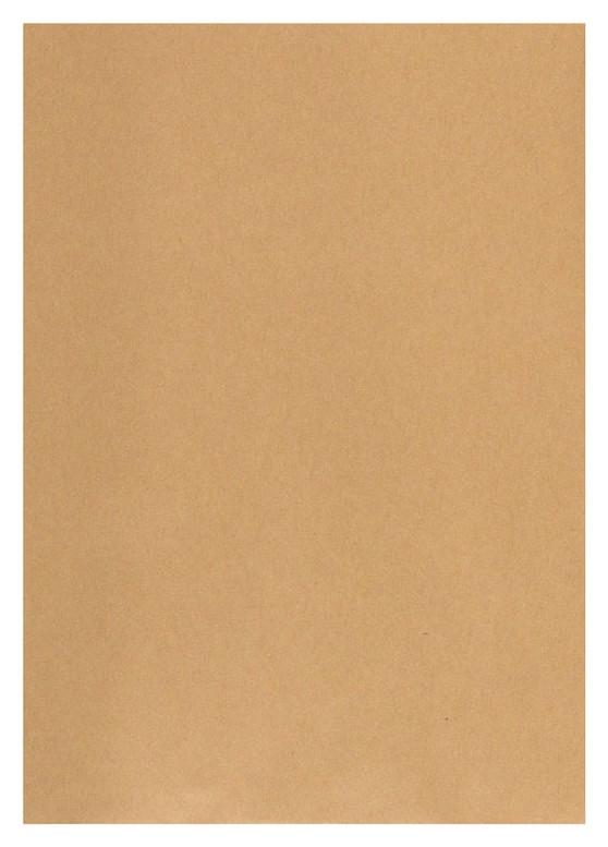 Пакеты в упаковке крафт С4 стрип Multipack229х324 100г 200шт/уп/5701  Packpost