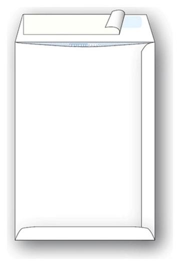 Пакеты в упаковке белый с4стрип Businesspack229х324 120г 200шт/уп/4853  Businesspack