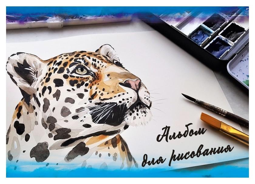 Альбом для рисования А4 24л,склейка нарисованные головы животных 9608/2 асс  Academy Style
