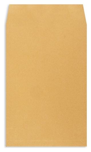 Пакет крафт E4стрип Extrapack 300х400х40 120г 250шт/уп/6586  Экстрапак