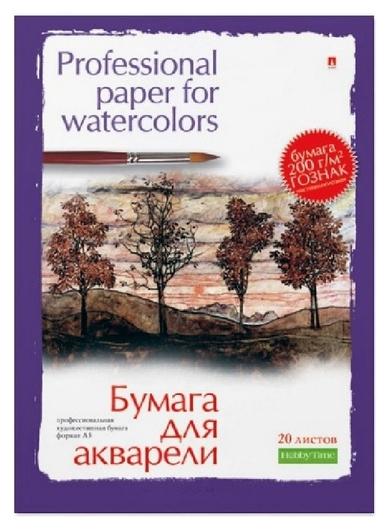 Папка для рисования акварелью а3,20л,блок гознак 200гр 4-020 дизайн в ассор  Альт