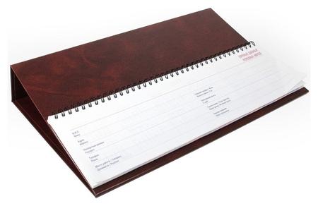 Планинг недатированный на подставке Balacron коричневый  NNB