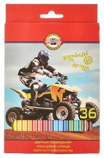 Карандаши цветные 36цв 6-гран Koh-i-noor Sport 3555  Koh-i-noor