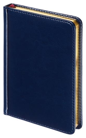 Ежедневник недатированный A6+, 136л, Sidney Nebraska синий 3-496/04 Альт