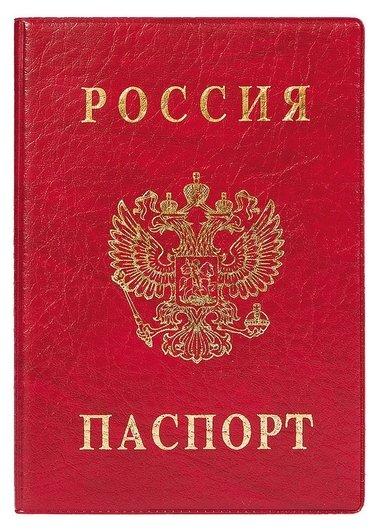 Обложка для паспорта вертикальная, красная 2203.в-102  Dps Kanc