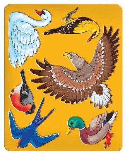 Трафарет птицы луч, 9C 449-08  Луч