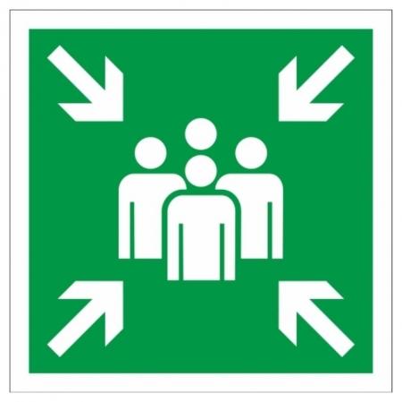 Знак безопасности Е21 пункт (Место) сбора, 200x200 мм, пластик  Технотерра