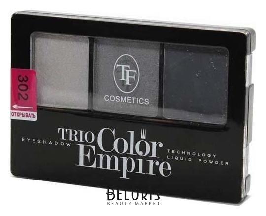 Тени для век Триумф, Тени для век тройные Trio Color Empire , Китай, Тон 302 (Графит)  - Купить