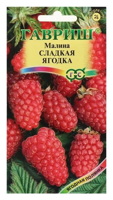 Семена малина Сладкая ягодка, 10 шт Гавриш