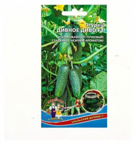 Семена огурец Дивное диво F1, раннеспелый, партенокарпический, 12 шт Уральский дачник