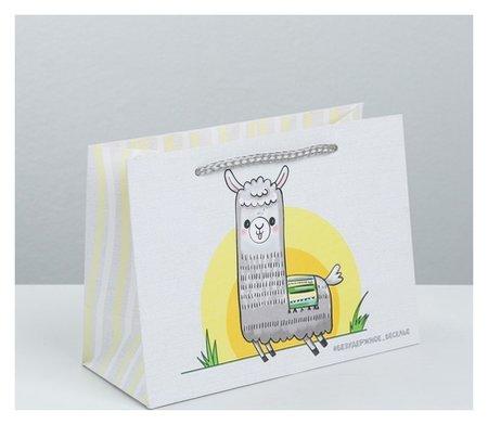 Пакет подарочный «Веселье», 19,5 × 14,5 × 8,5 см  Дарите счастье