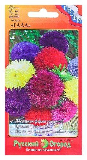 Семена цветов астра Гала, смесь, серия профи, О, 20 шт Русский огород