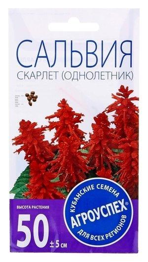 Семена цветов сальвия скарлет, О, 0,1г Агроуспех