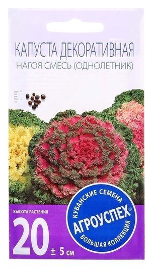 Семена цветов капуста декоративная нагоя, О, 10 шт Агроуспех