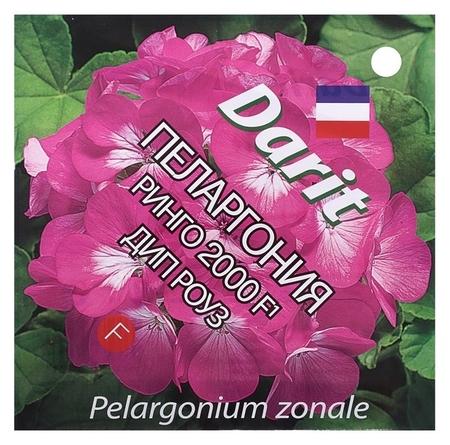 "Семена цветов пеларгония ""Ринго 2000"" F1 Дип роуз, Мн, Darit 4 шт  Агроуспех"