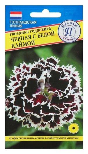 """Семена гвоздика """"Черная"""" с белой каймой, 15 шт  Престиж семена"""