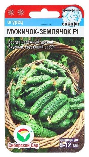"""Семена огурец """"Мужичок-землячок"""" F1, пчелоопыляемый, 7 шт  Сибирский сад"""