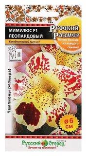 Семена цветов мимулюс, F1, серия русский размер, леопардовый, 10 шт  Русский огород