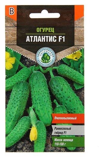 Семена огурец Атлантис F1 раннеспелый, пчелоопыляемый, 7 шт Тимирязевский питомник