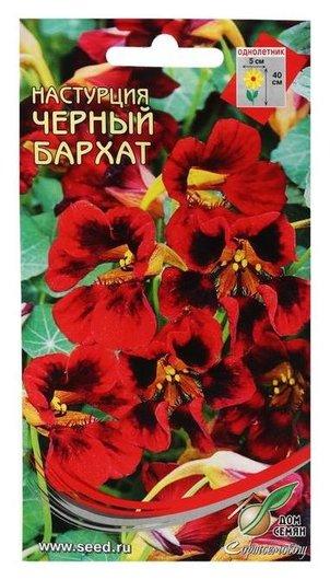 Семена цветов настурция Черный бархат, 9 шт Сортсемовощ