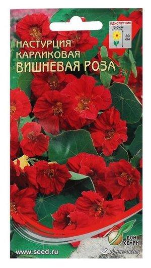 Семена цветов настурция карл.вишневая роза, 8 шт  Сортсемовощ