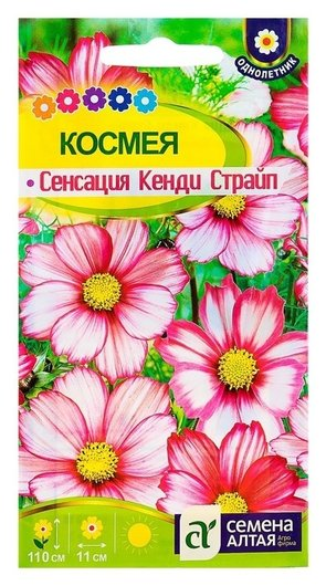 "Семена цветов космея ""Сенсация"" кенди страйп, О, цп, 0,5 г  Семена Алтая"