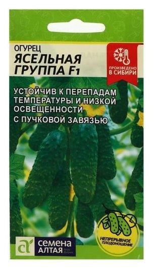 Семена огурец Ясельная группа, F1, 5 шт Семена Алтая