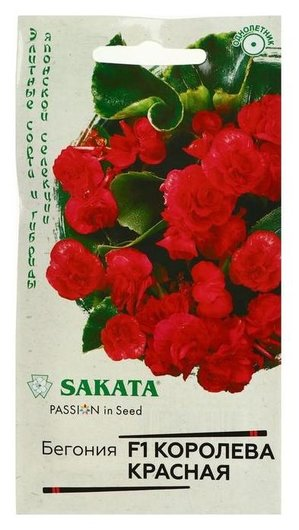 "Семена цветов бегония ""Королева красная"", F1, вечноцветущая, серия саката, 4 шт  Гавриш"