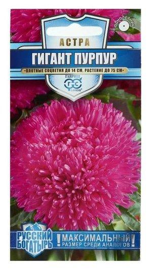 Семена цветов астра Гигант, пурпурная, однолетняя, серия русский богатырь, 0,1 г Гавриш