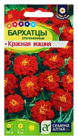 Семена цветов бархатцы Красная вишня, О, 0,2 г. Семена Алтая
