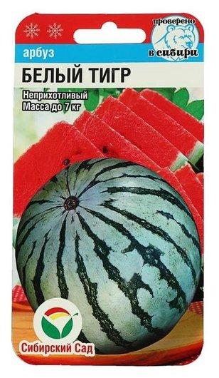 """Семена арбуз """"Белый тигр"""" 5шт  Сибирский сад"""