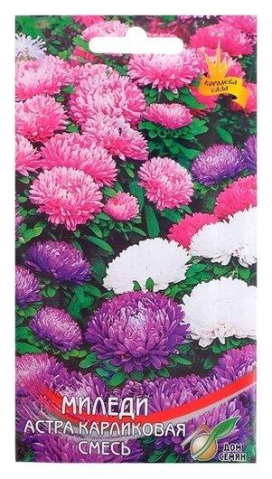 Семена цветов астра карликовая Миледи смесь, О, 90 шт Сортсемовощ