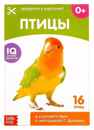 Обучающие карточки Г. домана «Птицы», на скрепке, 20 стр.  Буква-ленд