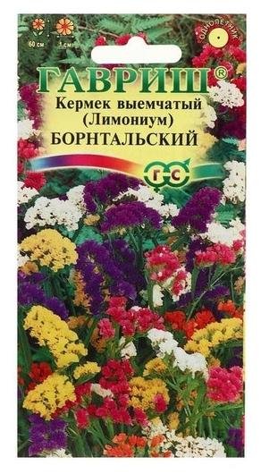 Семена цветов лимониум Борнтальский, выемчатый, смесь, 0,2 г Гавриш