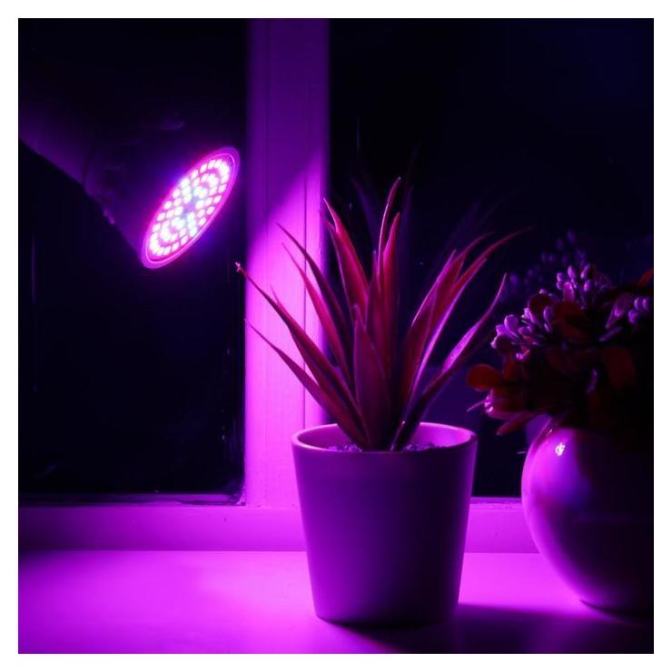 Светодиодная лампа для растений Luazon Lighting, 6 Вт, E27, 220в  LuazON