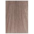 Крем-краска для волос Color cream Тон 10.61 Ультра-светлый фиолетово-пепельный блондин
