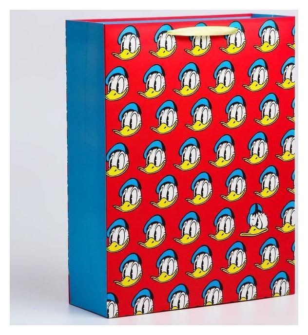 Пакет ламинат вертикальный, 31х40х11 см, Disney  Disney