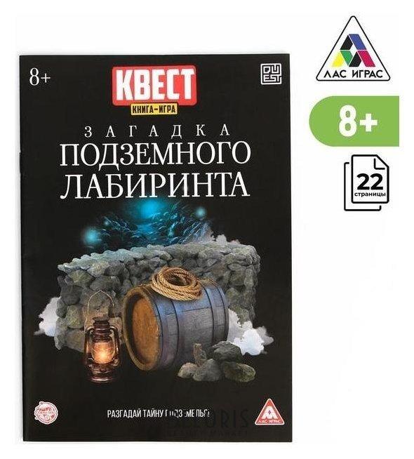 Книга-квест «Загадка подземного лабиринта» версия 2, 8+ Лас Играс