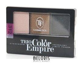 Купить Тени для век Триумф, Тени для век тройные Trio Color Empire , Китай, Тон 312 Золотой смоки