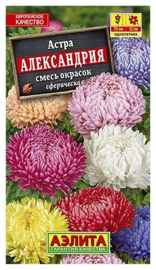 """Семена Астра - смесь окрасок """"Александрия""""  Аэлита"""