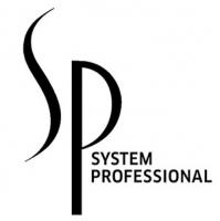 System Professional отзывы
