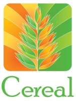 Cereal отзывы